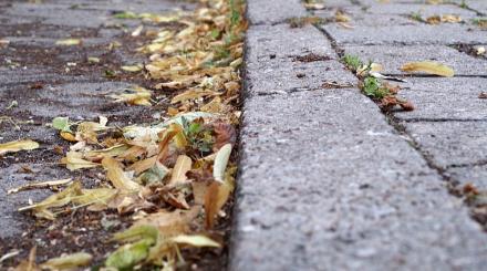 Akcja czyszczenia ulic - odwołana